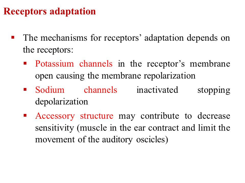 Receptors adaptation  The mechanisms for receptors' adaptation depends on the receptors:  Potassium channels in the receptor's membrane open causing