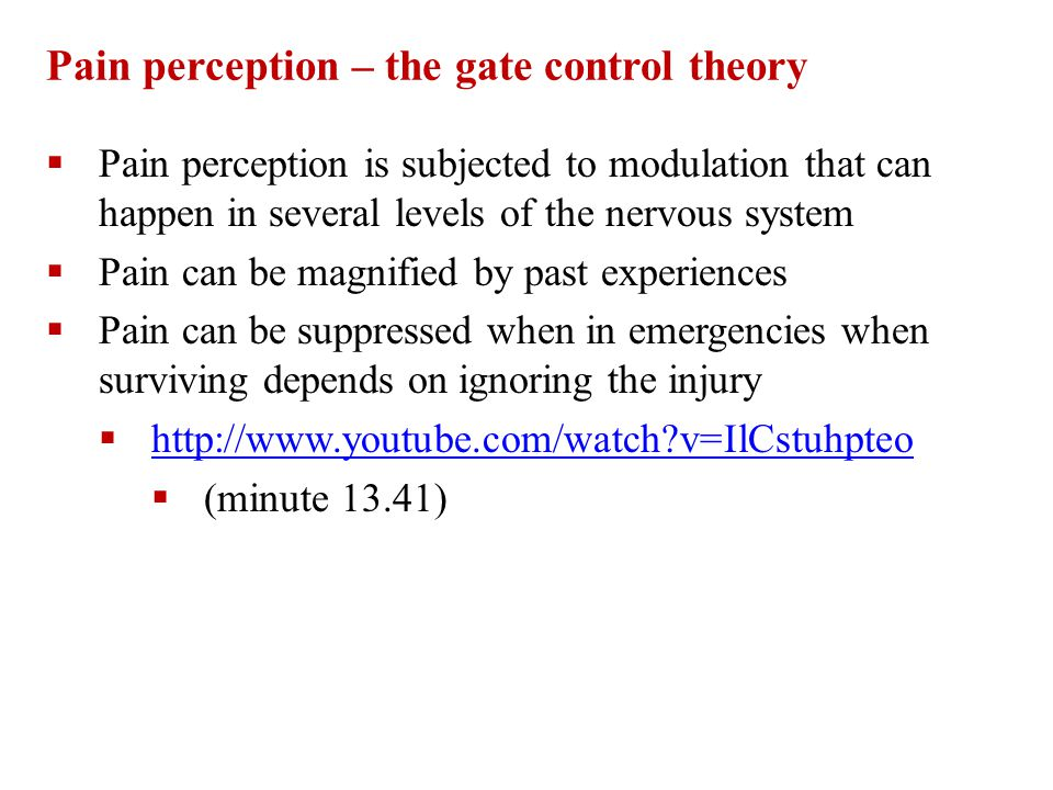 Pain perception – the gate control theory  Pain perception is subjected to modulation that can happen in several levels of the nervous system  Pain