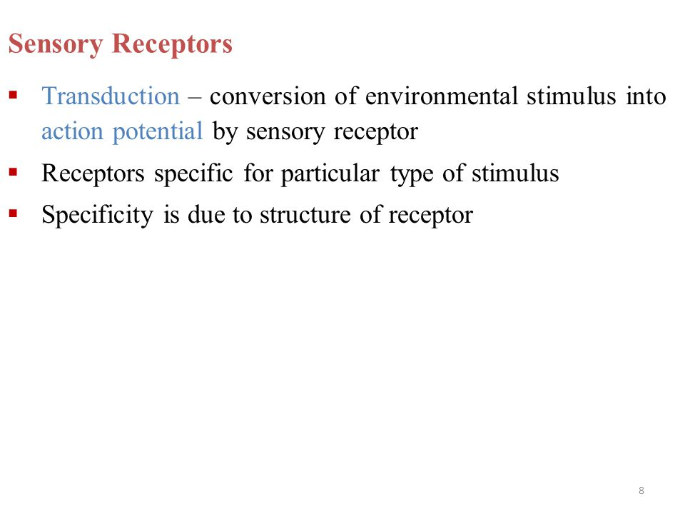 8 Sensory Receptors  Transduction – conversion of environmental stimulus into action potential by sensory receptor  Receptors specific for particula