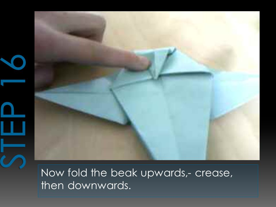 Now fold the beak upwards,- crease, then downwards.