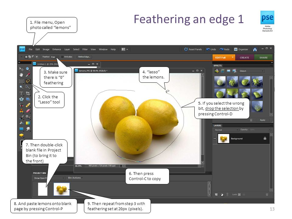 """Feathering an edge 1 13 1. File menu, Open photo called """"lemons"""" 2. Click the """"Lasso"""" tool 3. Make sure there is """"0"""" feathering 4. """"lasso"""" the lemons."""