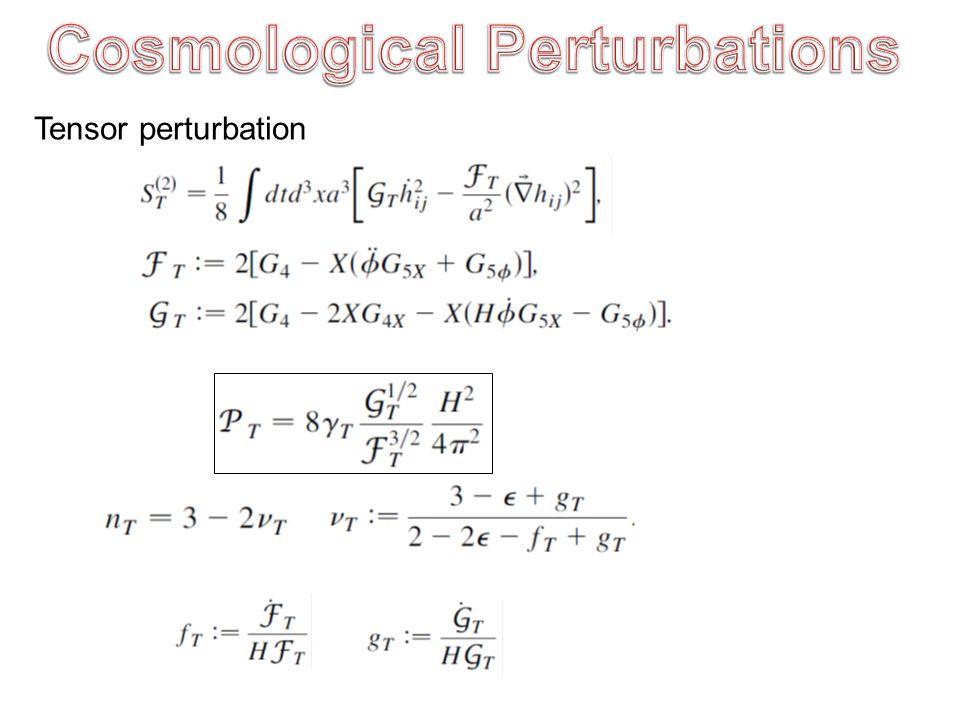 Tensor perturbation