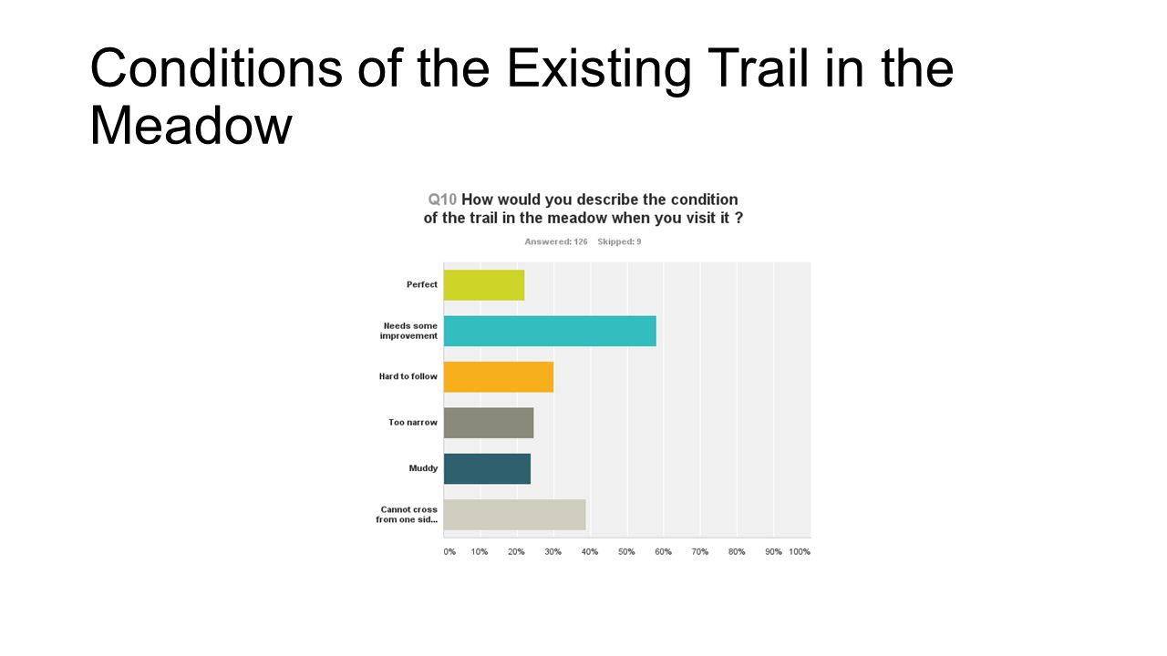 Conditions of the Existing Trail in the Meadow