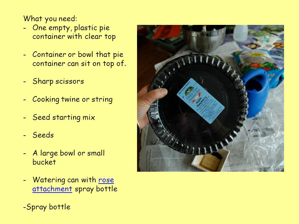 What you need: -One empty, plastic pie container with clear top -Container or bowl that pie container can sit on top of.