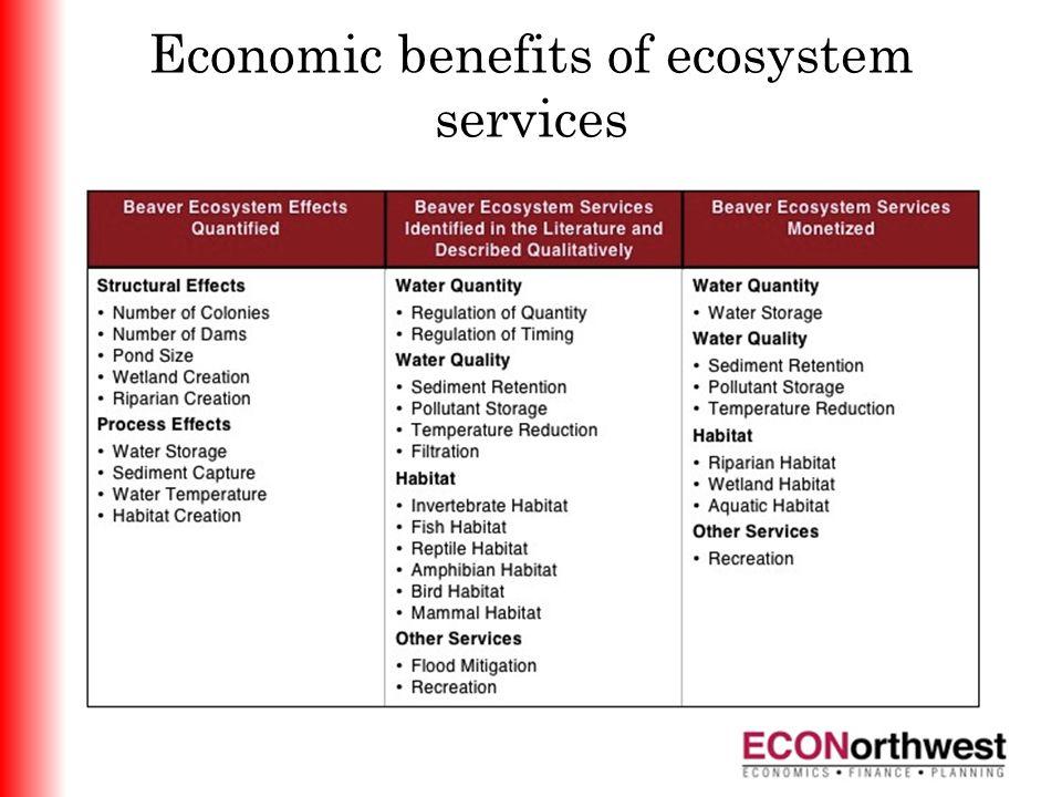 Economic benefits of ecosystem services