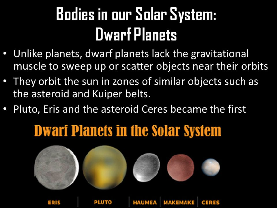 Bodies in our Solar System: Dwarf Planets Unlike planets, dwarf planets lack the gravitational muscle to sweep up or scatter objects near their orbits They orbit the sun in zones of similar objects such as the asteroid and Kuiper belts.