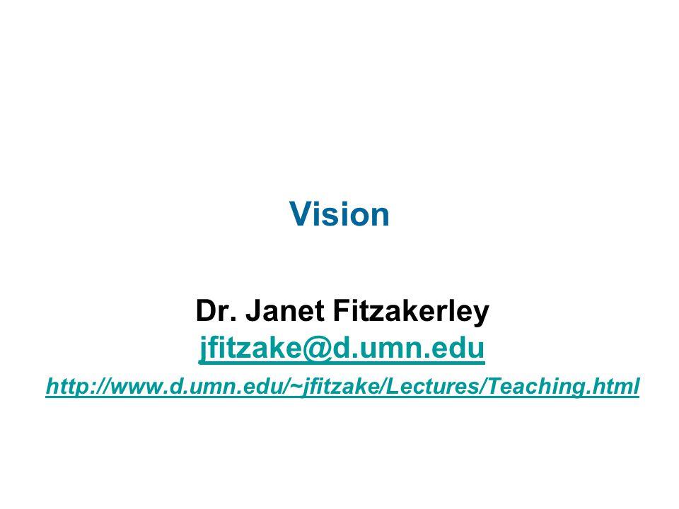 Vision Dr. Janet Fitzakerley jfitzake@d.umn.edu http://www.d.umn.edu/~jfitzake/Lectures/Teaching.html jfitzake@d.umn.edu http://www.d.umn.edu/~jfitzak
