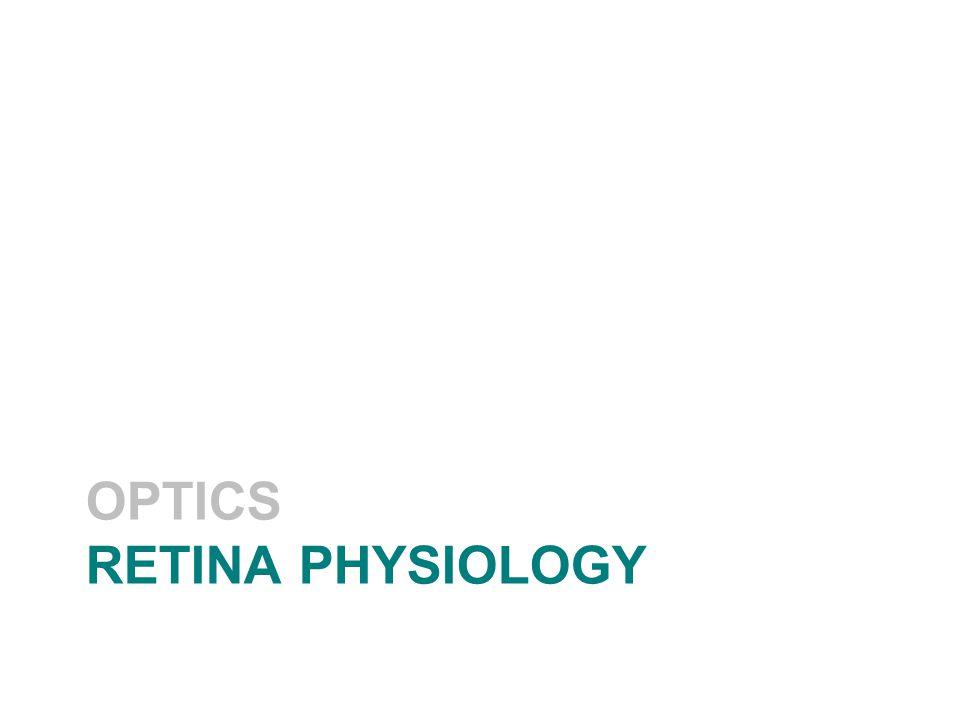 OPTICS RETINA PHYSIOLOGY