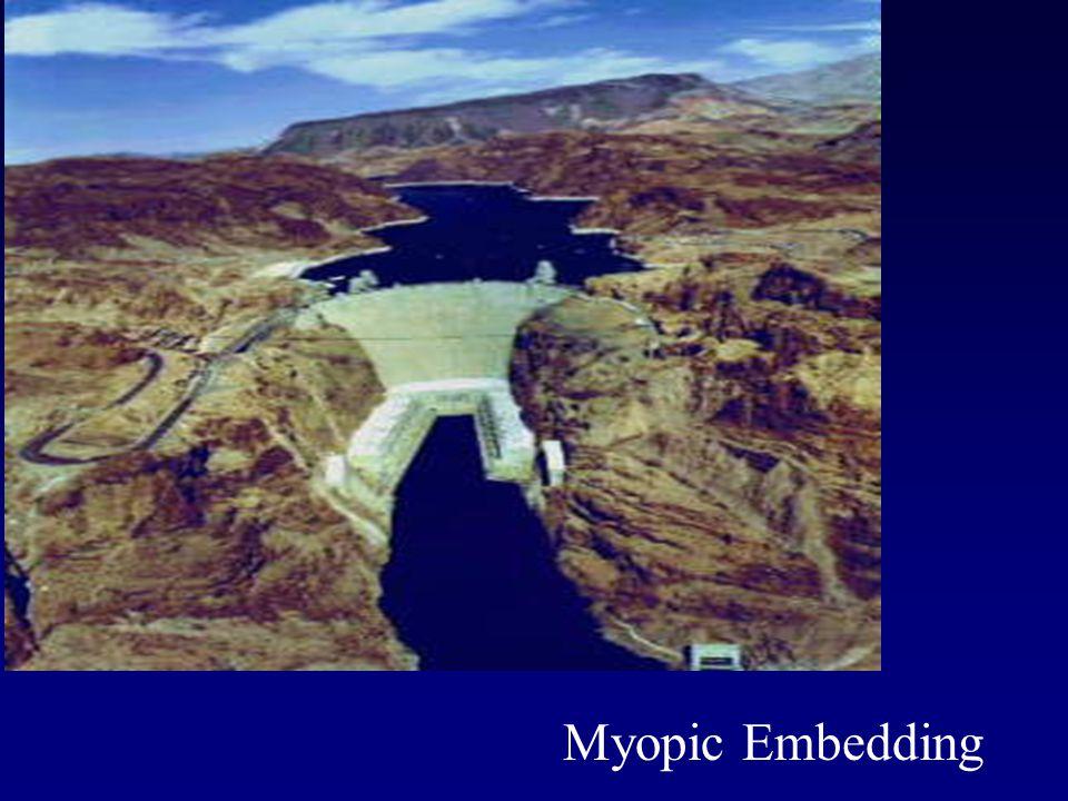Myopic Embedding