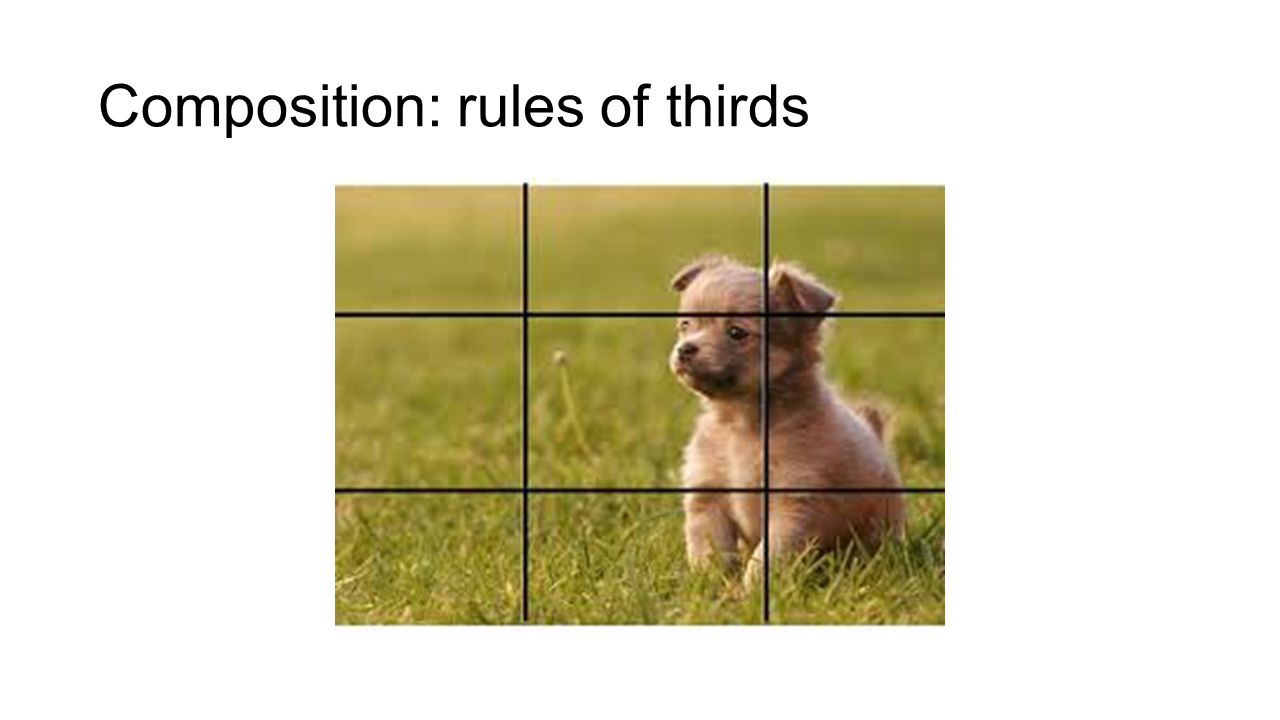 Composition: rules of thirds