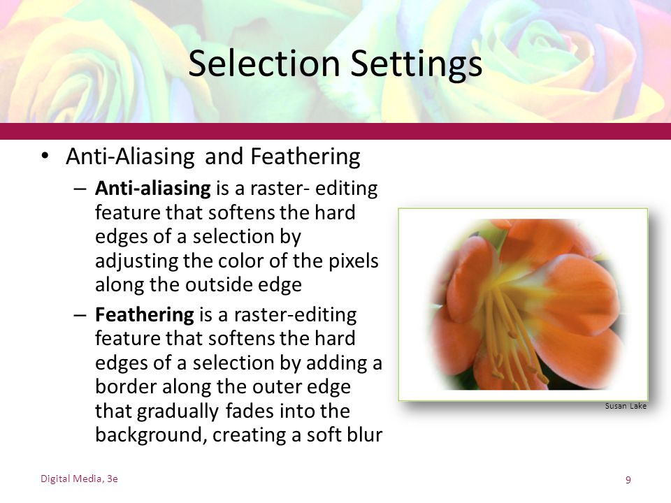 Selection Settings Anti-Aliasing and Feathering – Anti-aliasing is a raster- editing feature that softens the hard edges of a selection by adjusting t