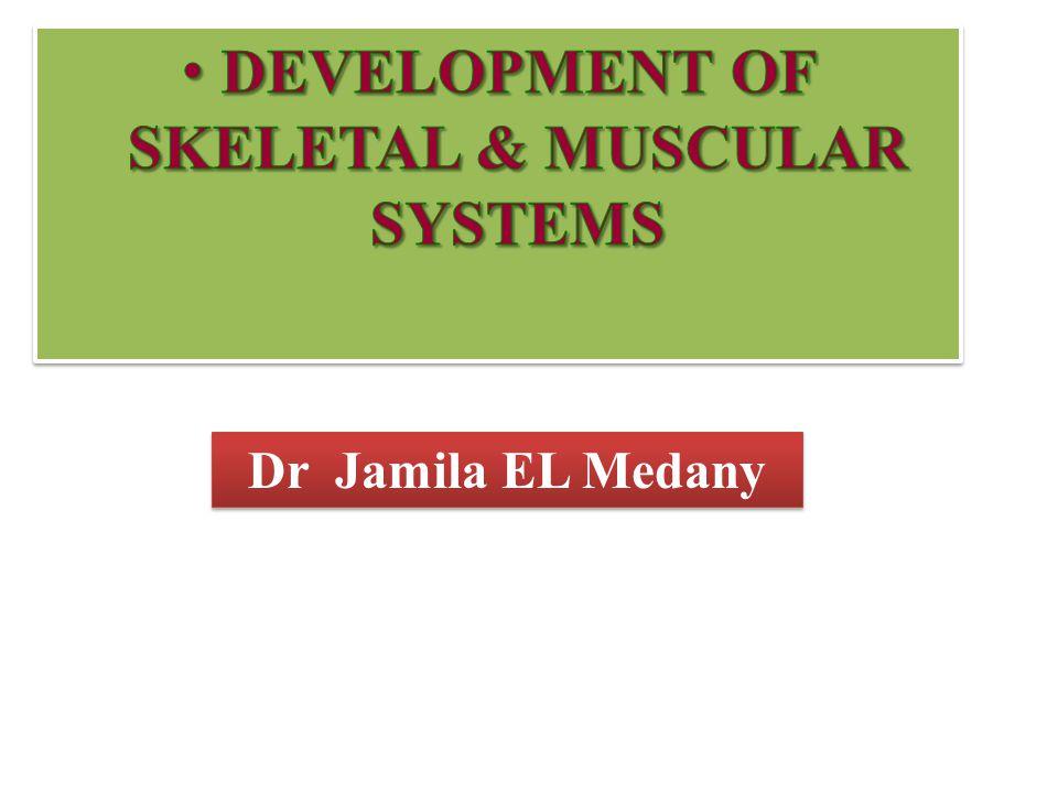 Dr Jamila EL Medany