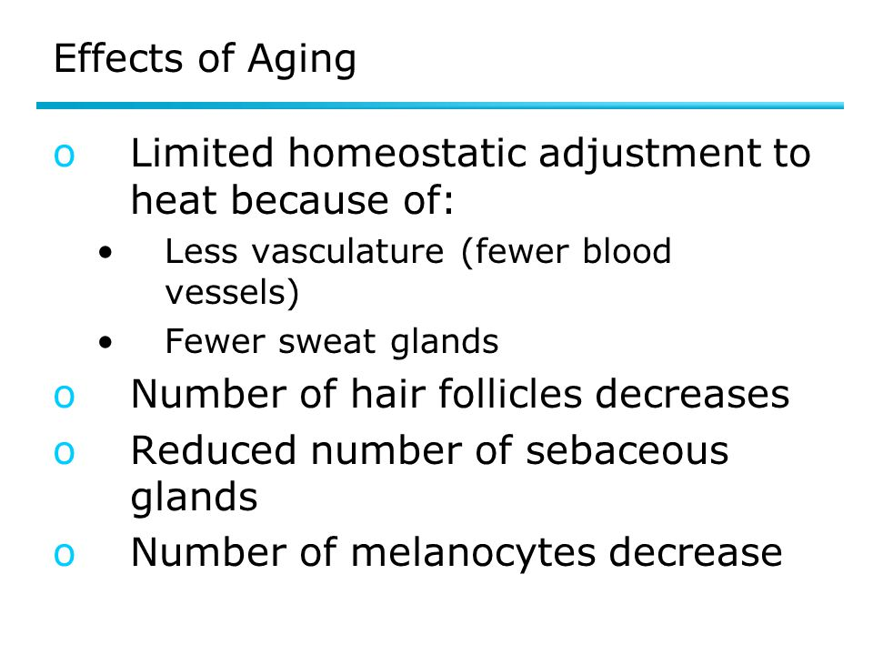 Effects of Aging oLimited homeostatic adjustment to heat because of: Less vasculature (fewer blood vessels) Fewer sweat glands oNumber of hair follicl