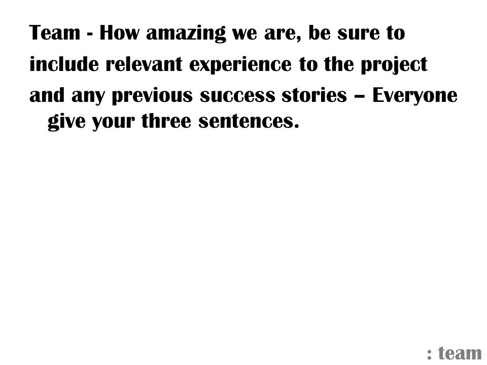 Team - How amazing we are, be sure to include relevant experience to the project and any previous success stories – Everyone give your three sentences.
