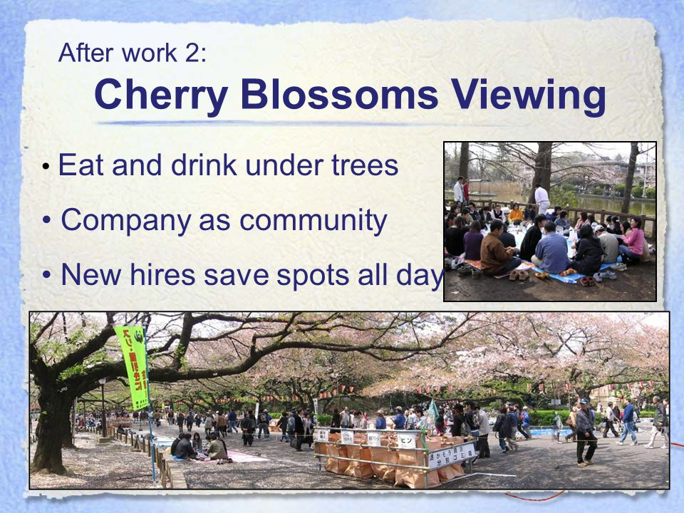 Eat and drink under trees Company as community New hires save spots all day After work 2: Cherry Blossoms Viewing