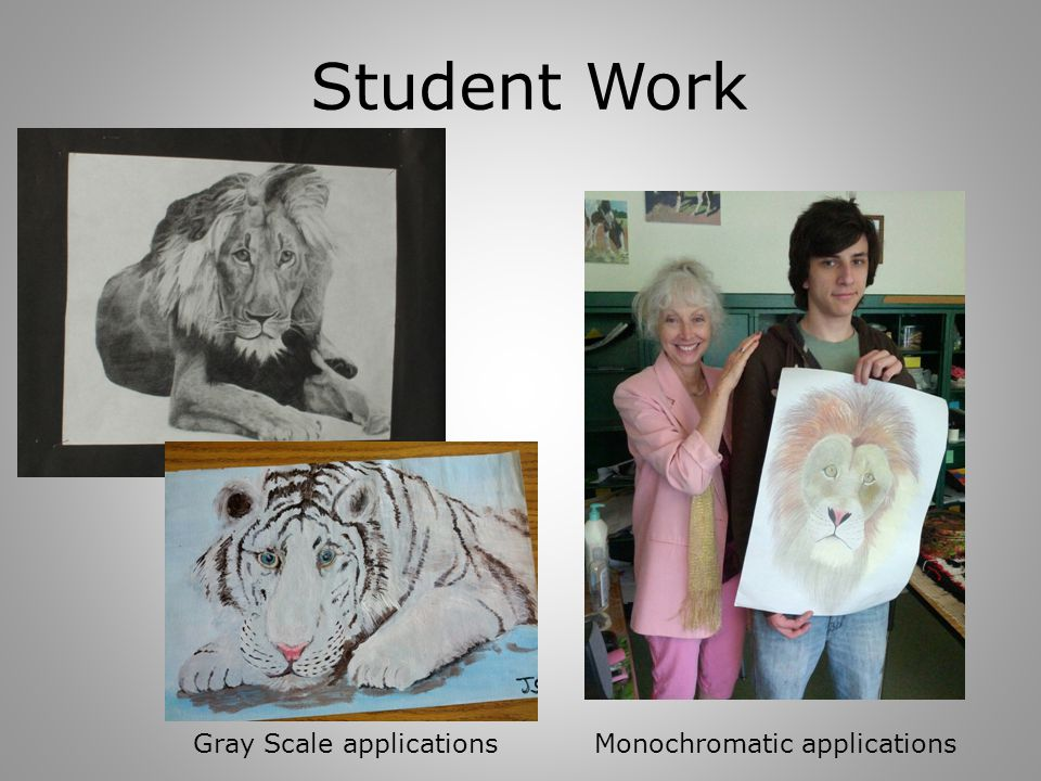 Student Work Monochromatic applicationsGray Scale applications