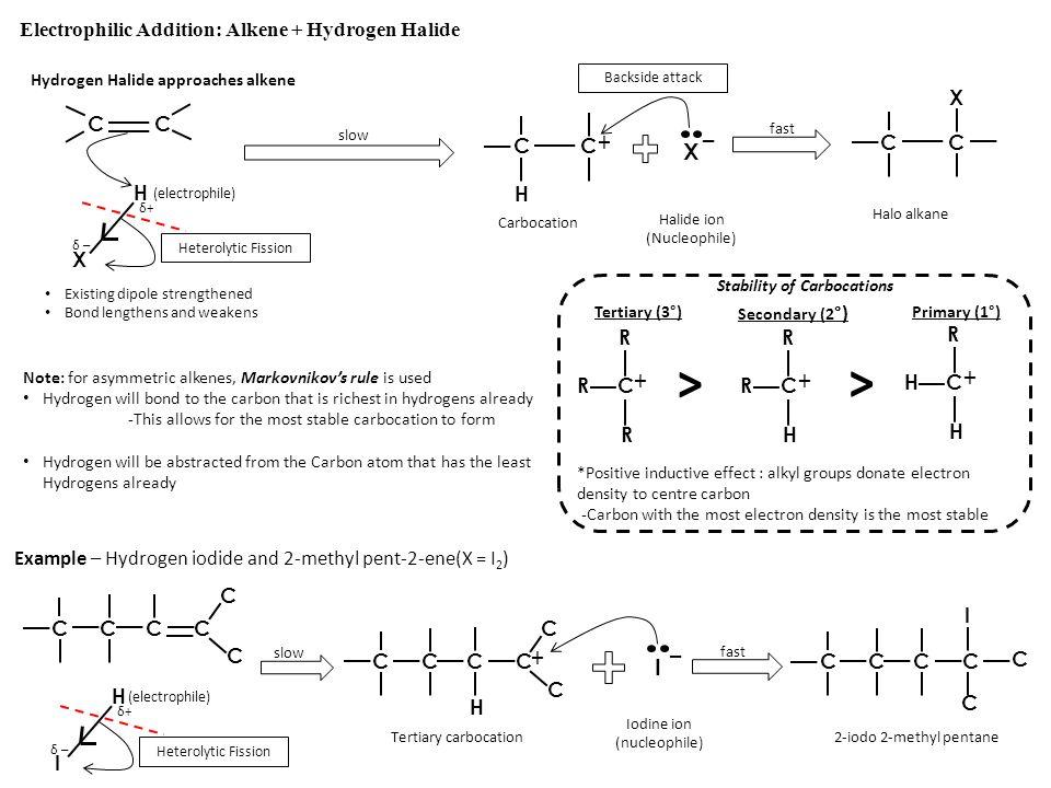 Electrophilic Addition: Alkene + Hydrogen Halide Hydrogen Halide approaches alkene Existing dipole strengthened Bond lengthens and weakens CC δ –δ – δ