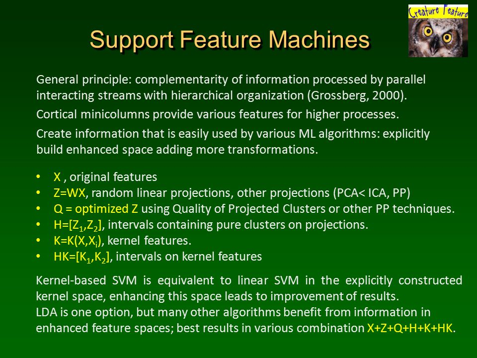 Support Feature Machines General principle: complementarity of information processed by parallel interacting streams with hierarchical organization (Grossberg, 2000).