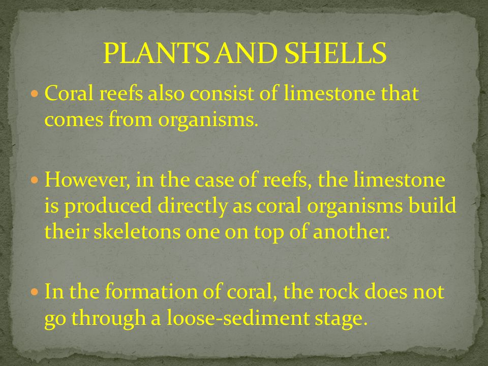 Coral reefs also consist of limestone that comes from organisms. However, in the case of reefs, the limestone is produced directly as coral organisms