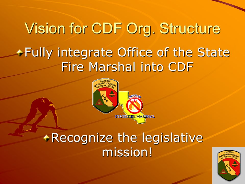 Vision for CDF Org.