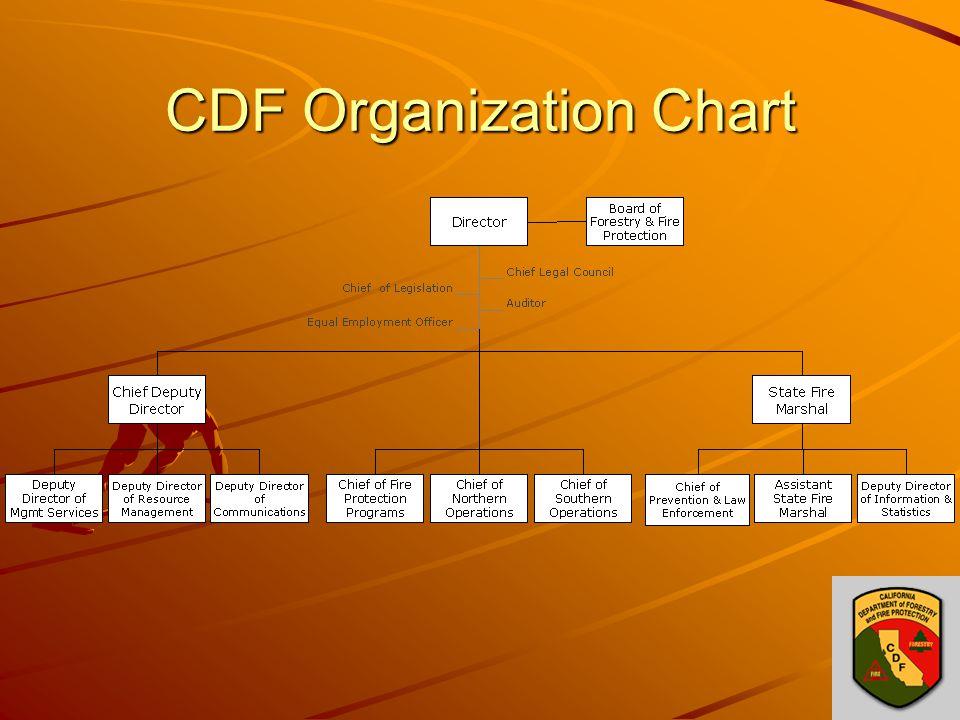 CDF Organization Chart