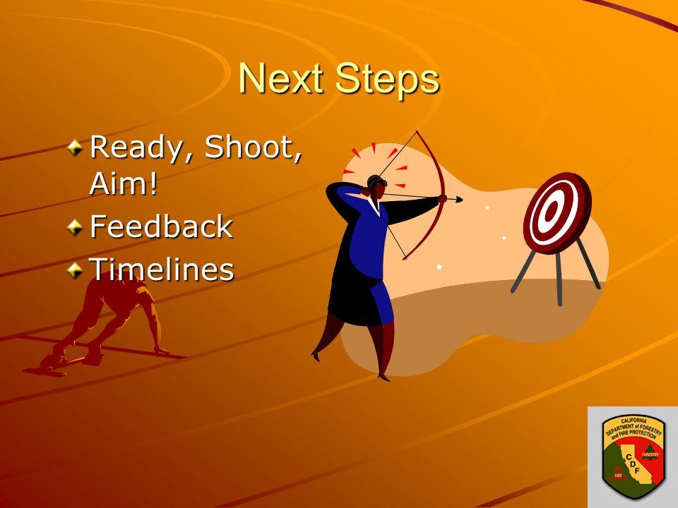 Next Steps Ready, Shoot, Aim! FeedbackTimelines
