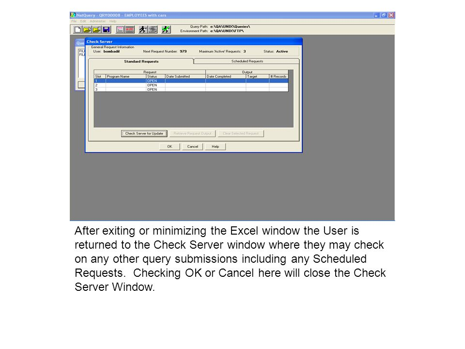 After exiting or minimizing the Excel window the User is returned to the Check Server window where they may check on any other query submissions including any Scheduled Requests.