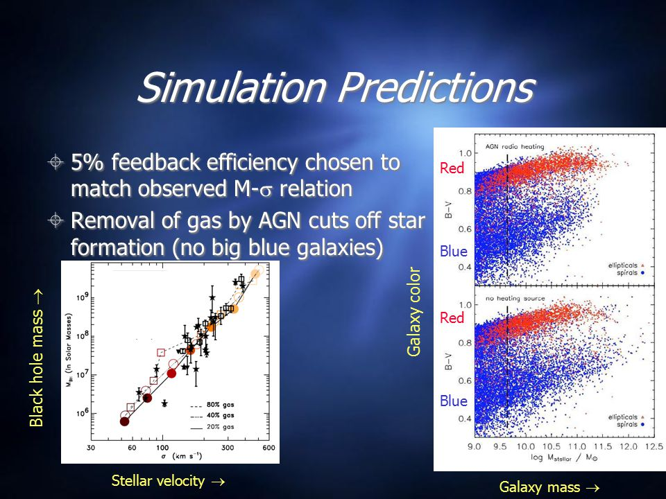 Simulation Predictions  5% feedback efficiency chosen to match observed M-  relation  Removal of gas by AGN cuts off star formation (no big blue ga