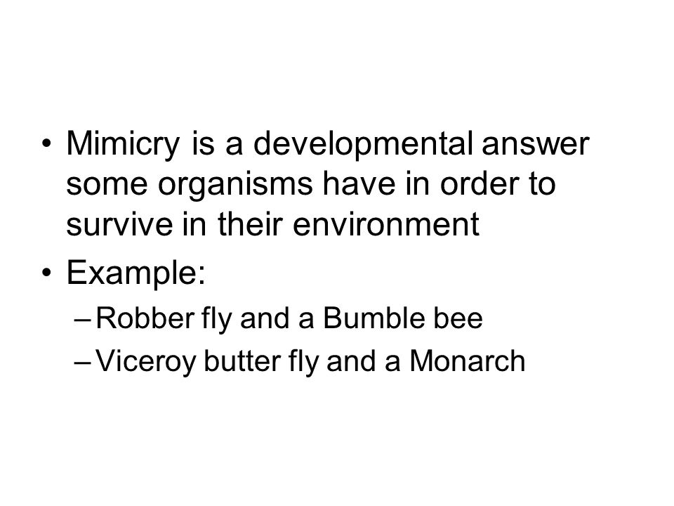 Mimicry is a developmental answer some organisms have in order to survive in their environment Example: –Robber fly and a Bumble bee –Viceroy butter fly and a Monarch