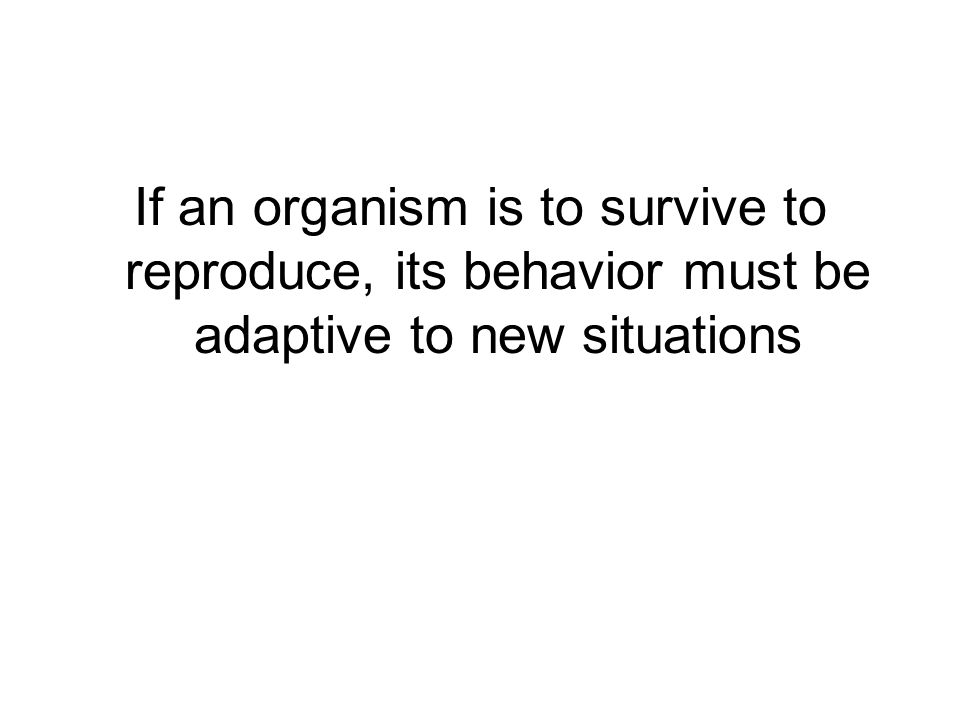 If an organism is to survive to reproduce, its behavior must be adaptive to new situations