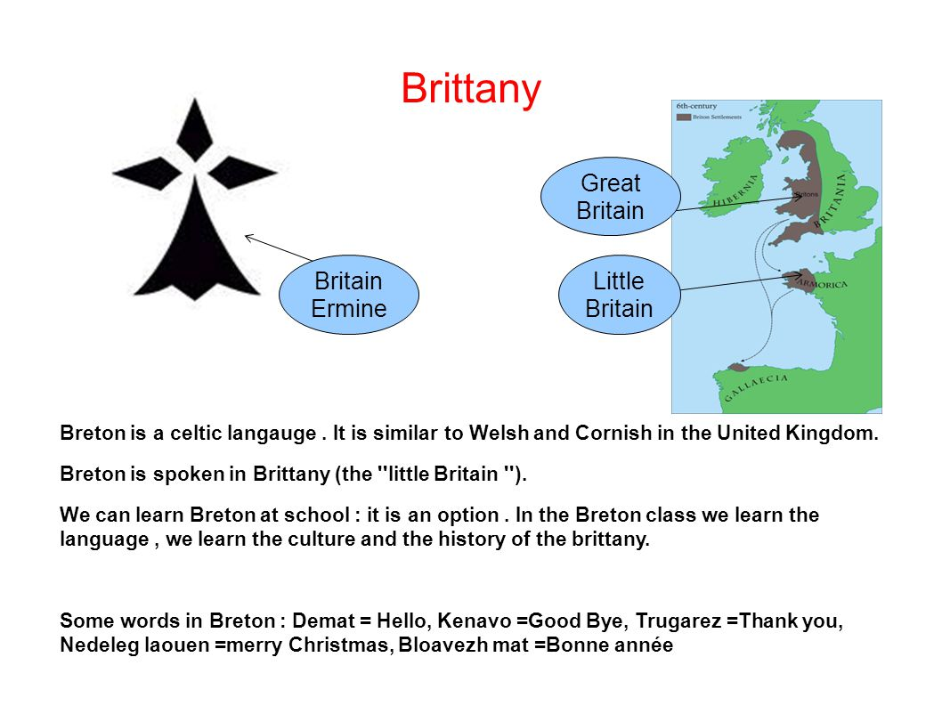 Brittany Breton is a celtic langauge. It is similar to Welsh and Cornish in the United Kingdom.