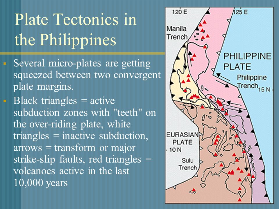 Plate Tectonics in the Philippines  Several micro-plates are getting squeezed between two convergent plate margins.