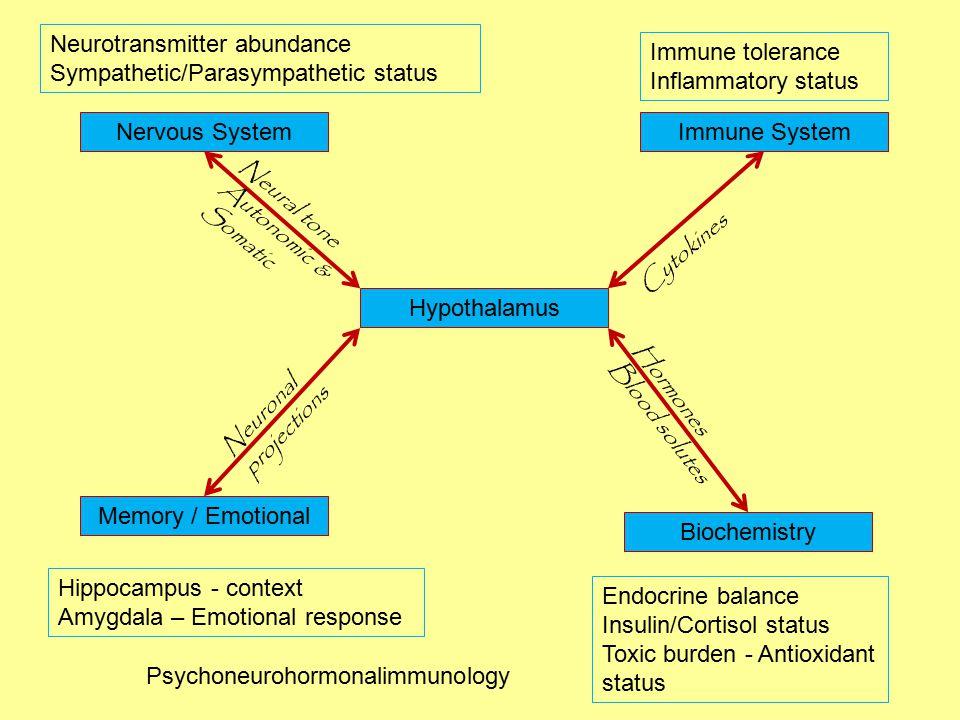 Hypothalamus Nervous SystemImmune System Biochemistry Memory / Emotional Neurotransmitter abundance Sympathetic/Parasympathetic status Hippocampus - context Amygdala – Emotional response Immune tolerance Inflammatory status Endocrine balance Insulin/Cortisol status Toxic burden - Antioxidant status Cytokines Neuronal projections Neural tone Autonomic & Somatic Hormones Blood solutes Psychoneurohormonalimmunology