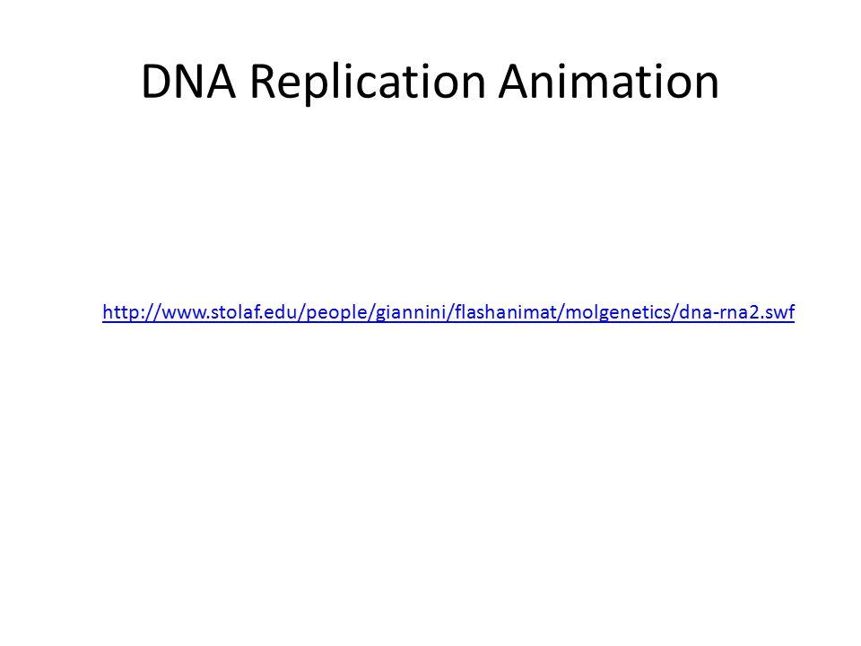 DNA Replication Animation http://www.stolaf.edu/people/giannini/flashanimat/molgenetics/dna-rna2.swf