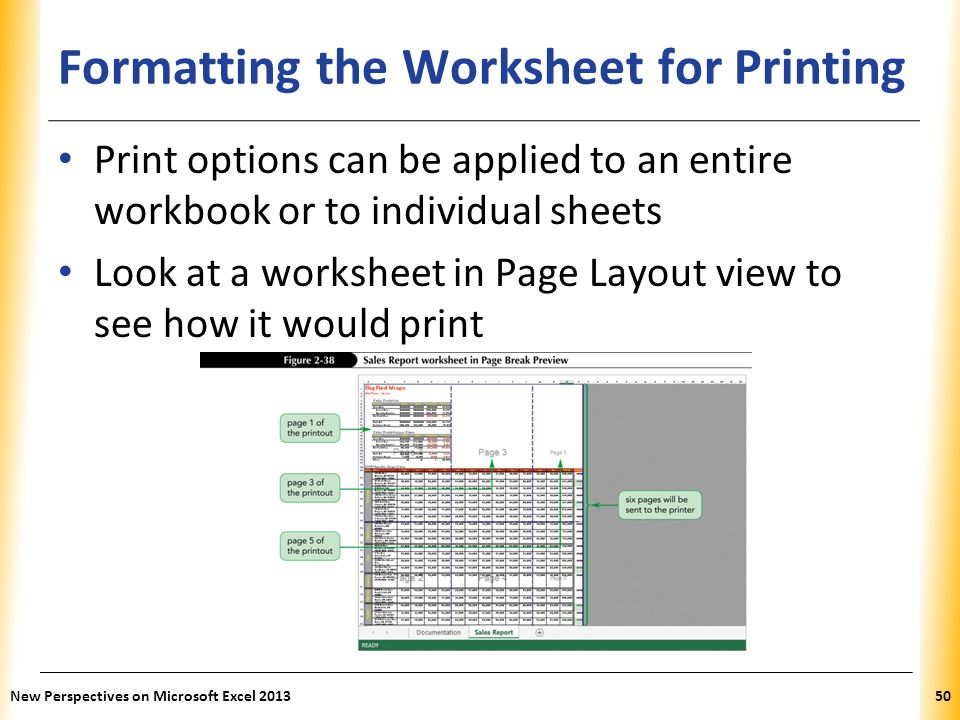 XP Formatting the Worksheet for Printing Print options can be applied to an entire workbook or to individual sheets Look at a worksheet in Page Layout