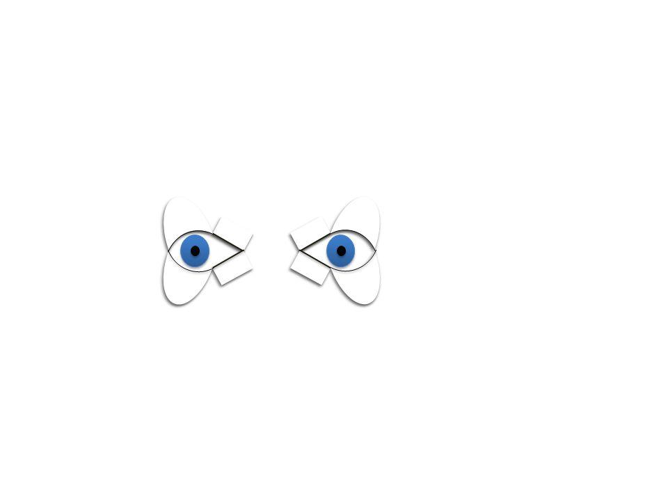 Vestibular nystagmus
