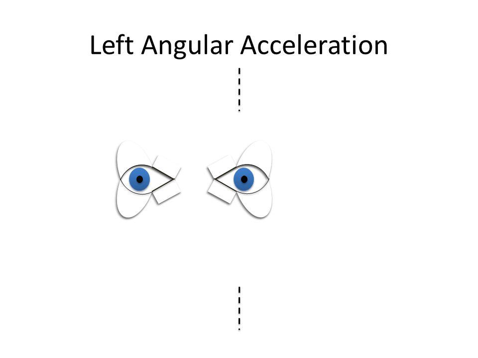 Left Vestibular Stimulation
