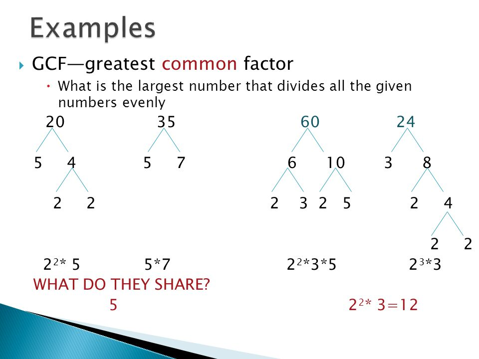  GCF—greatest common factor  What is the largest number that divides all the given numbers evenly 20356024 5 4 5 7 6 10 3 8 2 2 2 3 2 5 2 4 2 2 2 2 * 5 5*7 2 2 *3*5 2 3 *3 WHAT DO THEY SHARE.