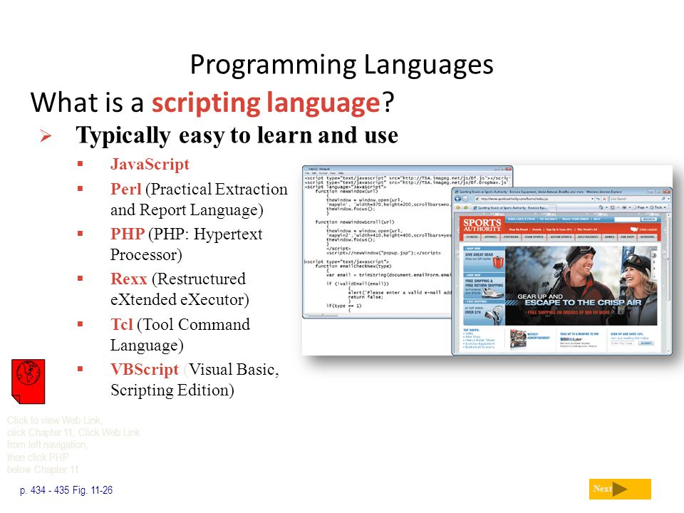 Programming Languages What is a scripting language? p. 434 - 435 Fig. 11-26 Next  Typically easy to learn and use  JavaScript  Perl (Practical Extr