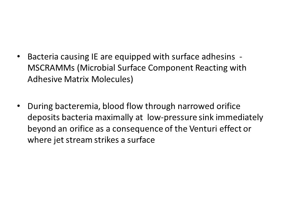 Bacteria causing IE are equipped with surface adhesins - MSCRAMMs (Microbial Surface Component Reacting with Adhesive Matrix Molecules) During bacteremia, blood flow through narrowed orifice deposits bacteria maximally at low-pressure sink immediately beyond an orifice as a consequence of the Venturi effect or where jet stream strikes a surface