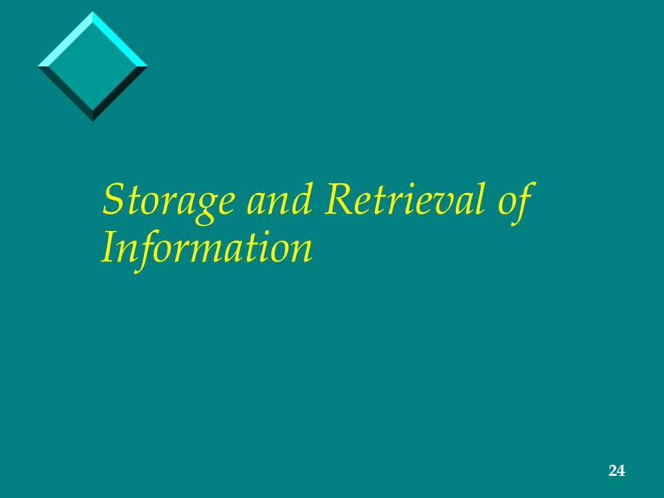 24 Storage and Retrieval of Information