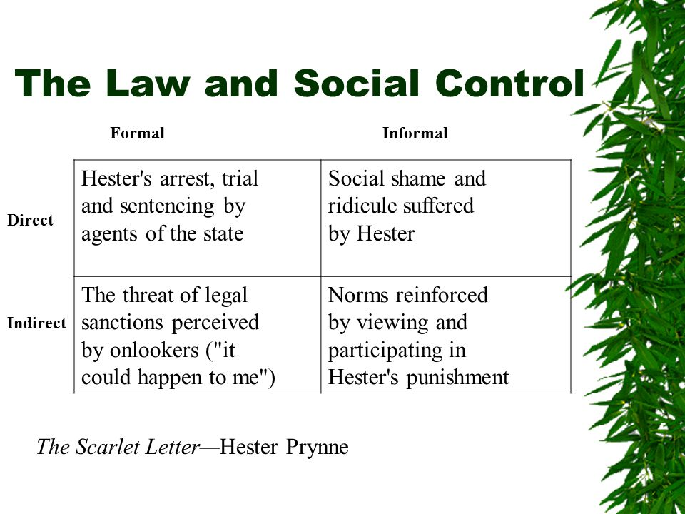 The Law and Social Control Formal Informal Hester s arrest, trial and sentencing by agents of the state Social shame and ridicule suffered by Hester The threat of legal sanctions perceived by onlookers ( it could happen to me ) Norms reinforced by viewing and participating in Hester s punishment Direct Indirect The Scarlet Letter—Hester Prynne
