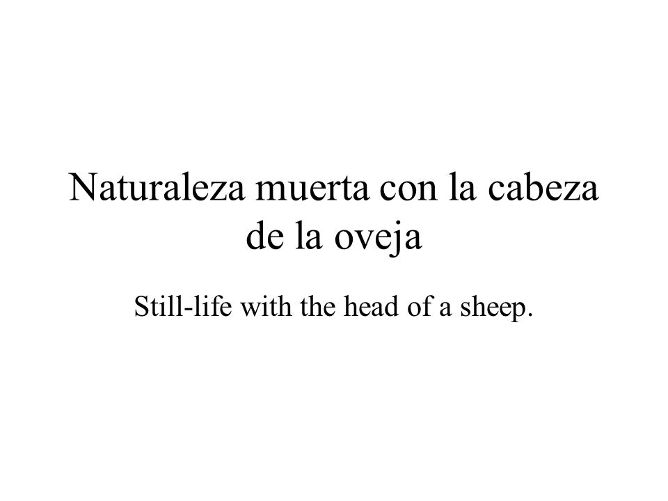 Naturaleza muerta con la cabeza de la oveja Still-life with the head of a sheep.