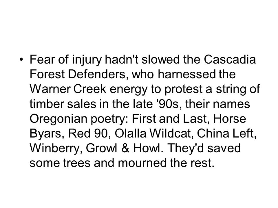 Fear of injury hadn't slowed the Cascadia Forest Defenders, who harnessed the Warner Creek energy to protest a string of timber sales in the late '90s