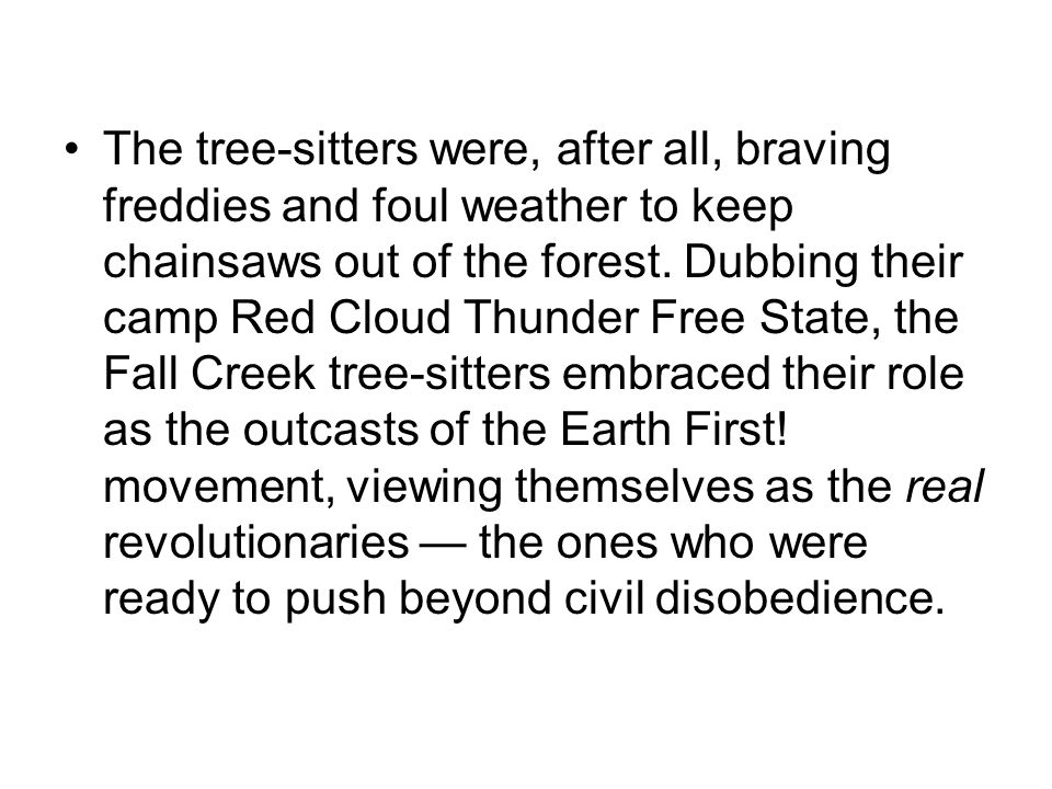 The tree-sitters were, after all, braving freddies and foul weather to keep chainsaws out of the forest. Dubbing their camp Red Cloud Thunder Free Sta