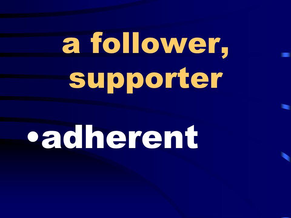 a follower, supporter adherent