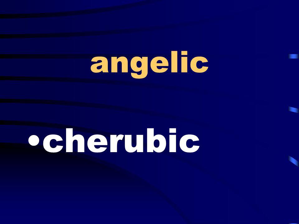angelic cherubic