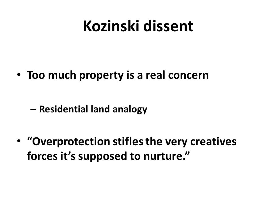 "Kozinski dissent Too much property is a real concern – Residential land analogy ""Overprotection stifles the very creatives forces it's supposed to nur"