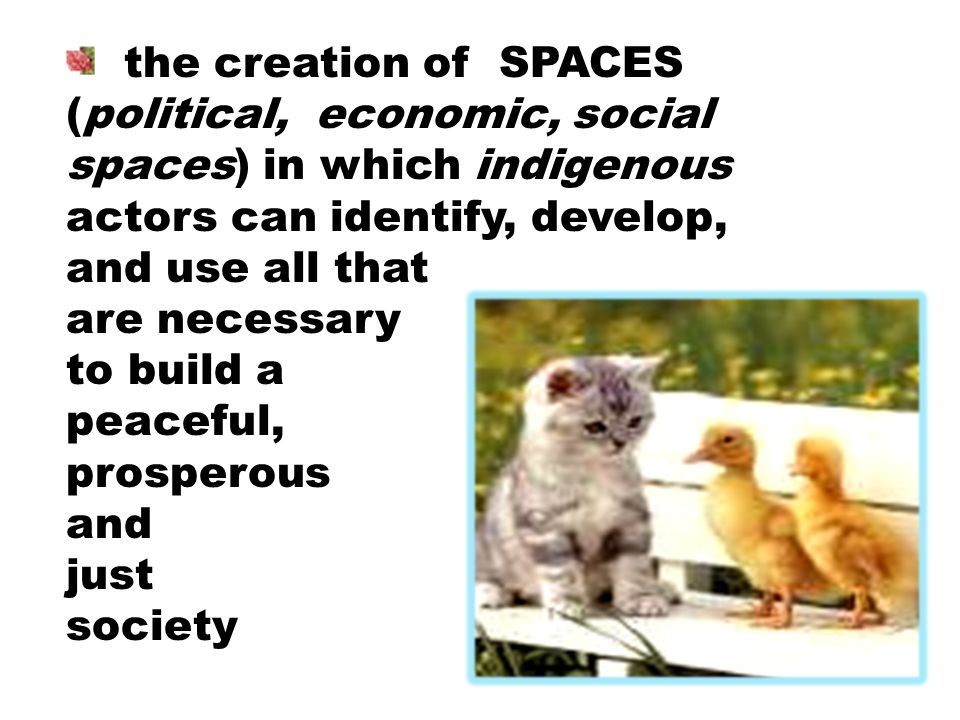 the creation of SPACES (political, economic, social spaces) in which indigenous actors can identify, develop, and use all that are necessary to build