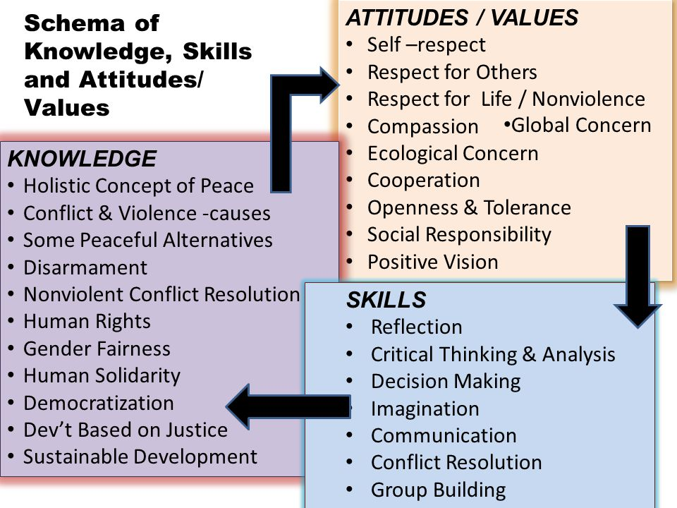 ATTITUDES / VALUES Self –respect Respect for Others Respect for Life / Nonviolence Compassion Ecological Concern Cooperation Openness & Tolerance Soci